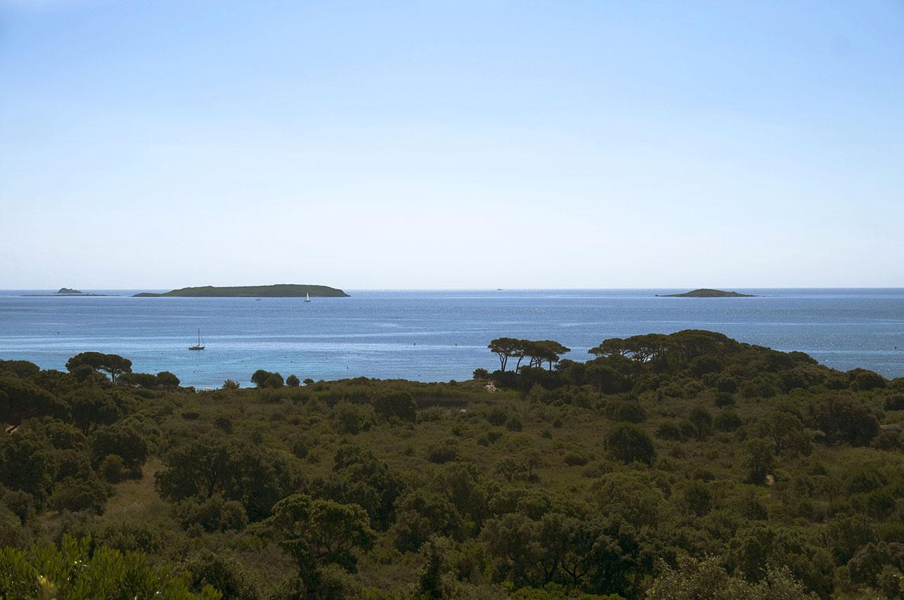 Korsika, 2011